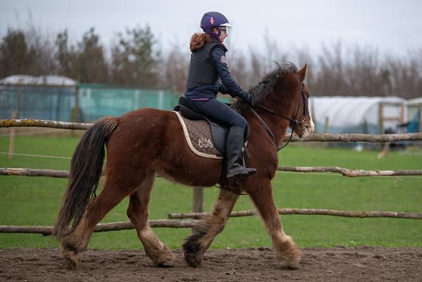 Pony camp am4437