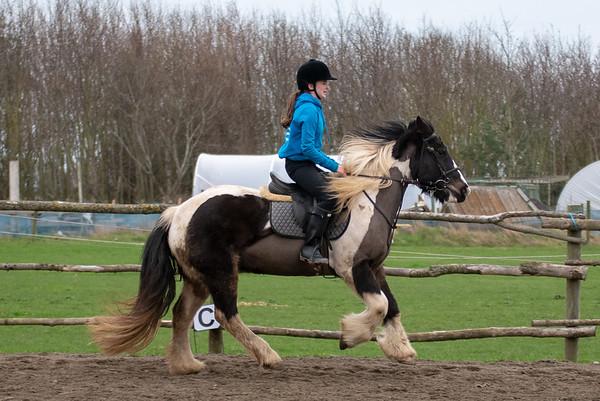 Pony camp am4426