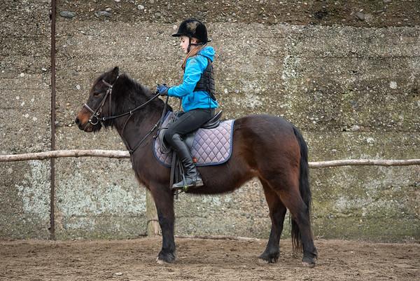 Pony camp am4361
