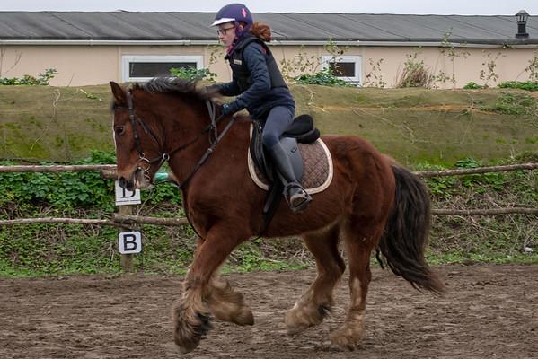 Pony camp am4444