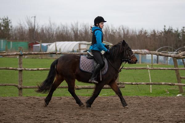 Pony camp am4381