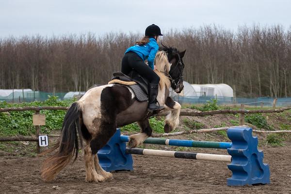 Pony camp am4421