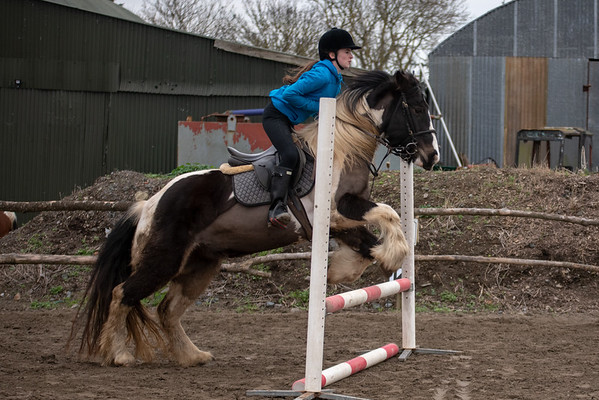 Pony camp am4418