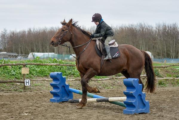 Pony camp PM5453