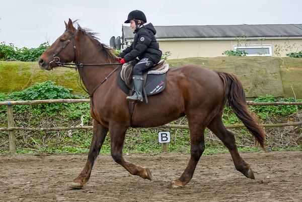 Pony camp PM5498