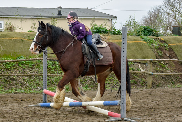 Pony camp PM5544