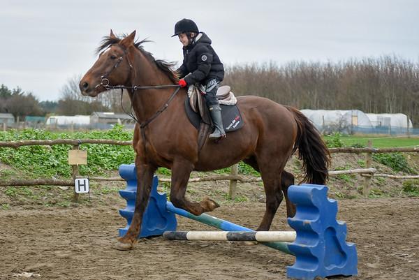 Pony camp PM5503