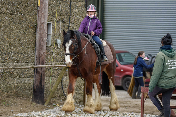 Pony camp PM5534