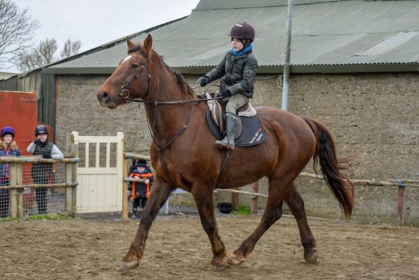 Pony camp PM5447