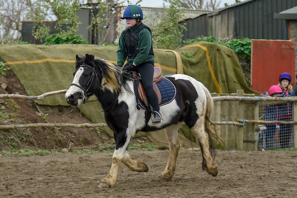 Pony camp PM5515