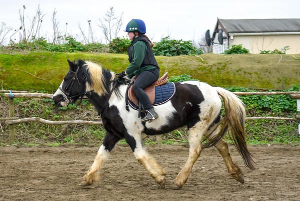 Pony camp PM5520