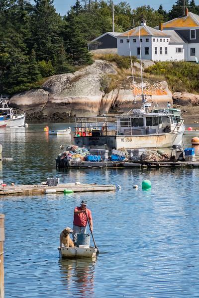 Corea, Maine  Working Harbor  9-10-16