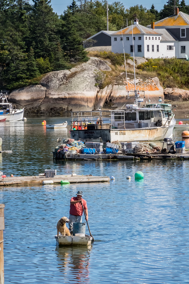 Corea, Maine  Working Harbor  9-10-16