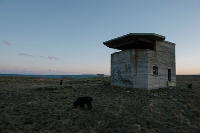 Observation tower and searchlight emplacement