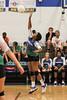 CCA Lady  Ducks Volleyballl -  2014 - DCEIMG-9723