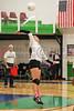 CCA Lady  Ducks Volleyballl -  2014 - DCEIMG-9641