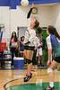 CCA Lady  Ducks Volleyballl -  2014 - DCEIMG-9720