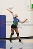 CCA Lady  Ducks Volleyballl -  2014 - DCEIMG-9650