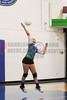 CCA Lady  Ducks Volleyballl -  2014 - DCEIMG-9652