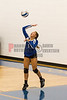 Oak Ridge Pioneers @ Cornerstone Ducks  Girls Varsity Volleyball  -  2015 - DCEIMG-7541