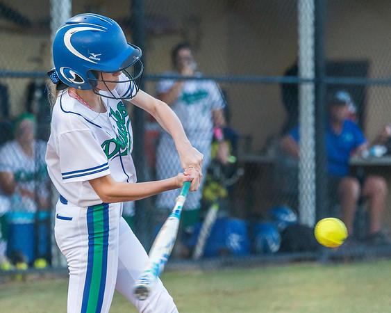 Cornerstone Charter Academy Women's Softball