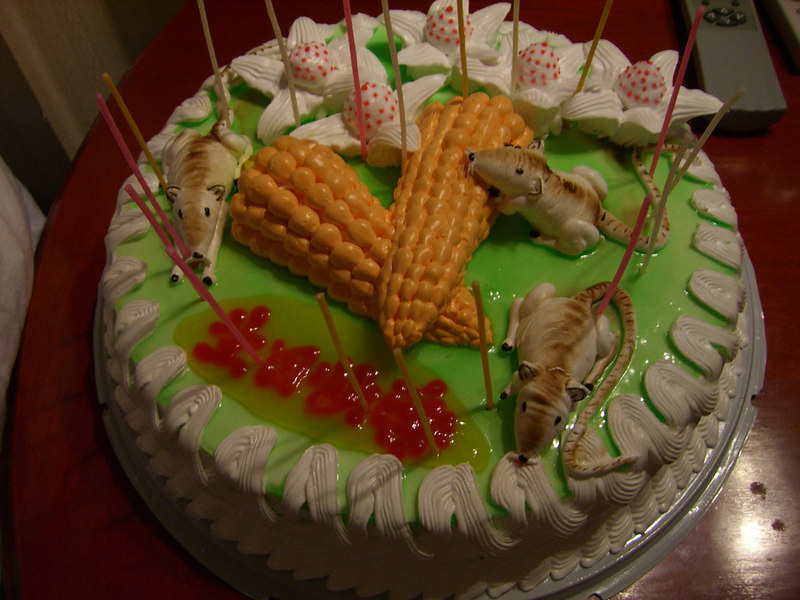 2006 07 18 Tue - Prep'ing for Isaac's b-day surprise - Oops a rat and corn cake 2