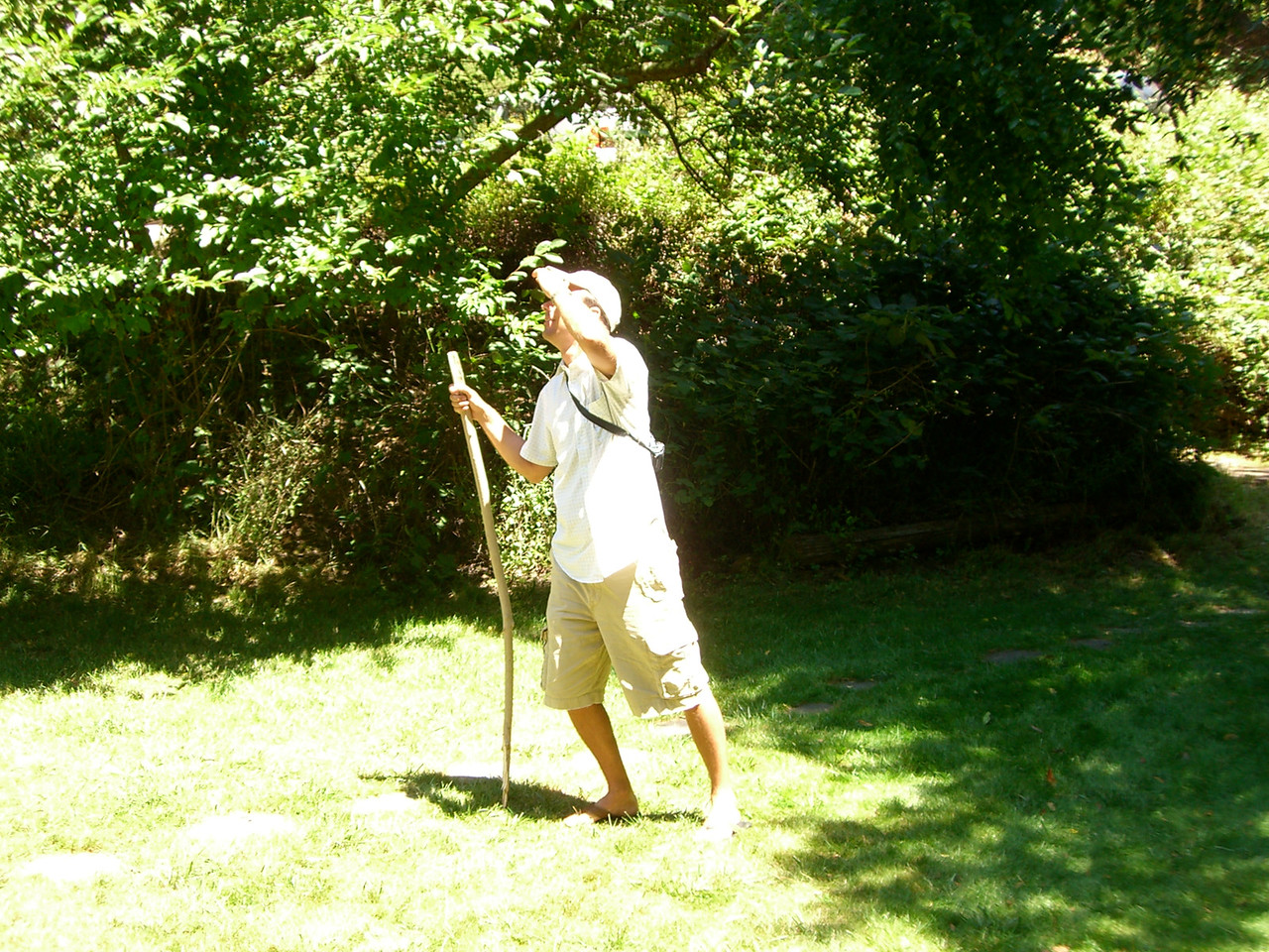 2006 07 08 Sat - Expeditionary Hoomes surveys the land 1