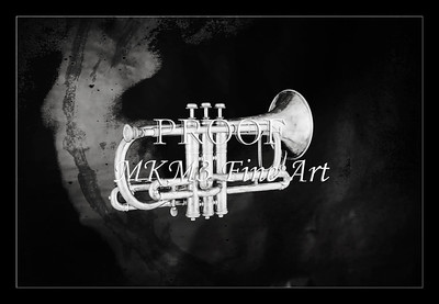 Monochrome Antique Cornet 216.2064