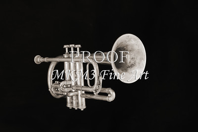 Monochrome Antique Cornet 212.2064