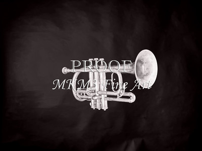 Monochrome Antique Cornet 217.2064