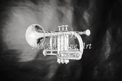 Monochrome Antique Cornet 214.2064