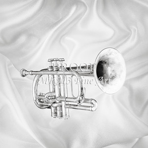 Monochrome Antique Cornet 207.2064