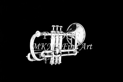 Monochrome Antique Cornet 210.2064