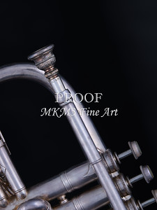 Antique Cornet in Color 127.2061