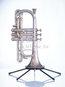 Antique Cornet in Color 109.2061