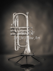 Antique Cornet in Black and White 214.2061