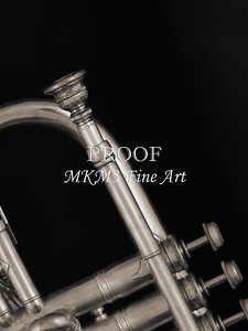 Antique Cornet in Black and White 226.2061