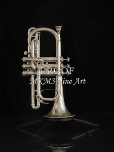 Antique Cornet in Black and White 217.2061