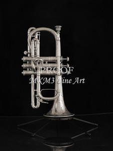 Antique Cornet in Black and White 216.2061