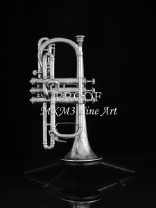 Antique Cornet in Black and White 218.2061