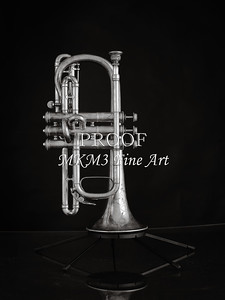 Antique Cornet in Black and White 215.2061
