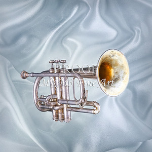 Sheppards Crook Cornet in Color 107.2064
