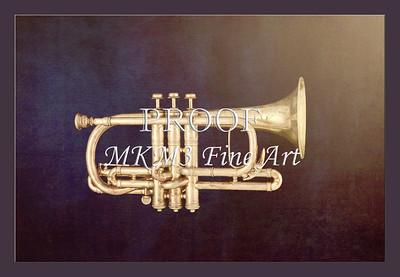 Sheppards Crook Cornet in Color 119.2064