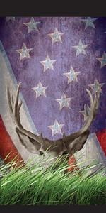 American Buck