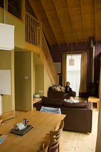 Main Living Area (3)