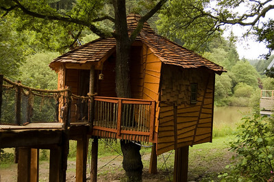 Tree HouseYou can even book a cabin which has one of these tree houses which contain a bedroom and bathroom.