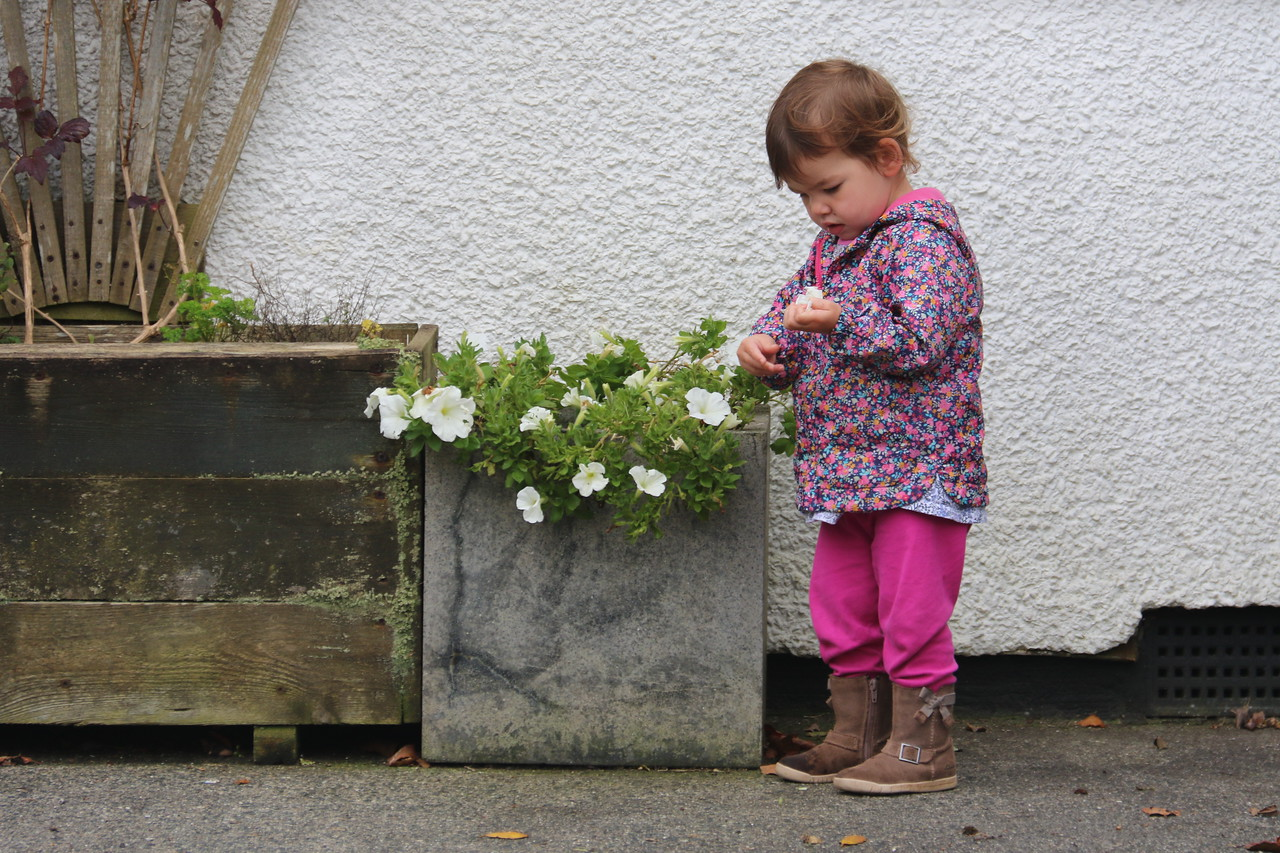 Little girl and some petals