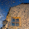 Rain Bonnet
