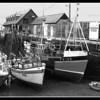 Mevagissey Harbour Fresh Fish