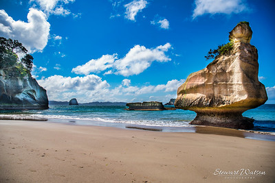Cathedral Cove  Te Hoho